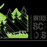SSD_logo_FINAL_RGB Edited